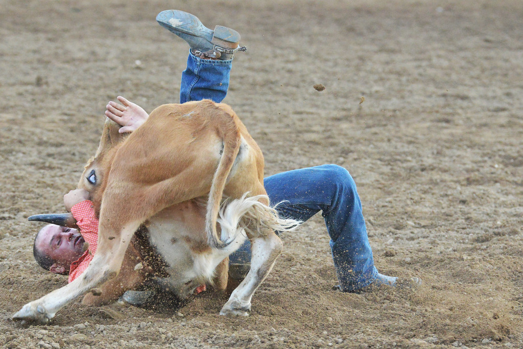 Chad Van Campen of Granada, Colo., battles his steer Wednesday night at the Sheridan-Wyo-Rodeo. (Brad Estes/The Sheridan Press)