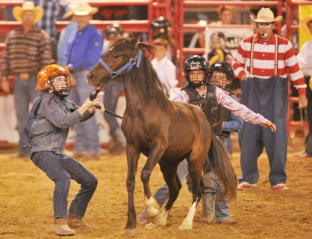 Team Sheridan, from left, Jarrod Roberts, 14, Tavy Leno, 10, and Coye Gregory, 9, try to anchor and ride a pony in the Wild Pony Races Sheridan WYO Rodeo Saturday night at the Sheridan County Fairgrounds arena. The Sheridan Press|Justin Sheely.
