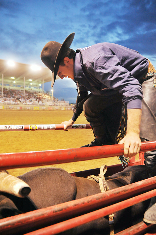 Parker Breding of Joliet, Montana, prepares the bull for riding during the first night of the Sheridan WYO Rodeo Wednesday at the Sheridan County Fairgrounds. The Sheridan Press|Justin Sheely.