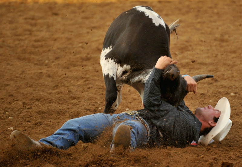 Steer wrestler Scott Guenthner fights his way out of trouble at the Sheridan WYO Rodeo on Thursday at the Sheridan County Fairgrounds. The Sheridan Press Mike Pruden