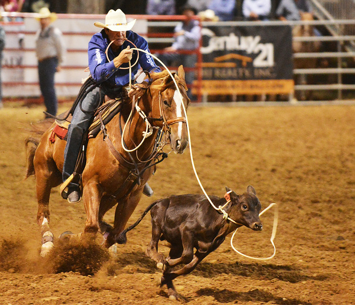 Michael Otero of Lowndesboro, Ala., competes in tie down roping during the Sheridan WYO Rodeo Wednesday night at the Sheridan County Fairgrounds arena. The Sheridan Press Justin Sheely.