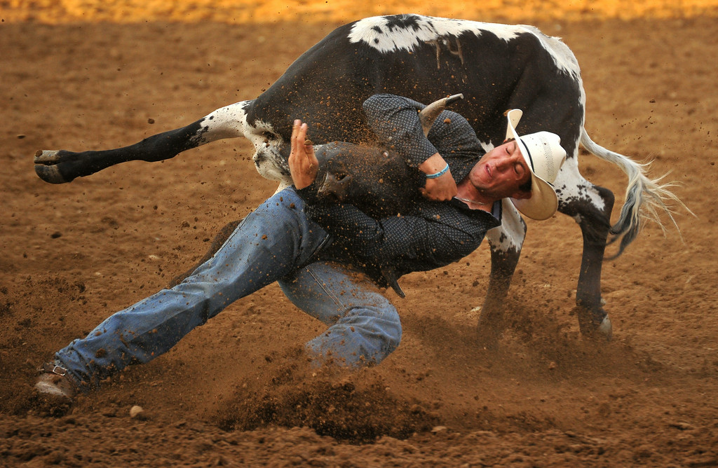 Scott Guenthner wrestles his steer during the Sheridan WYO Rodeo on Thursday at the Sheridan County Fairgrounds. The Sheridan Press|Mike Pruden
