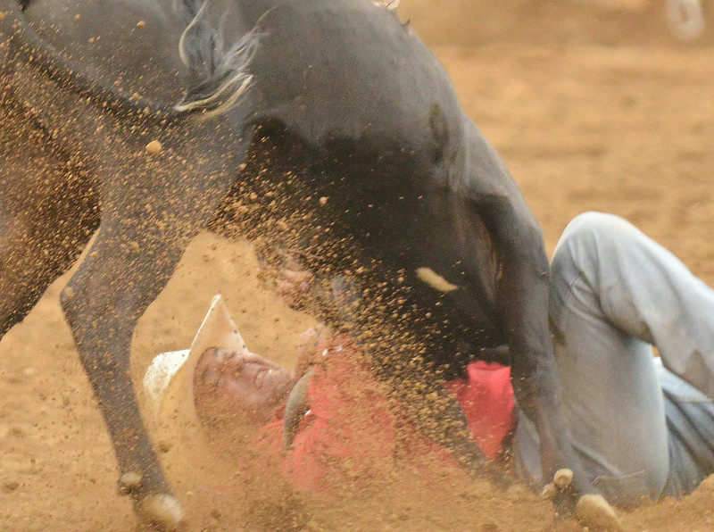 Bray Ames of Ponder, Texas, competes in steer wrestling during the Sheridan WYO Rodeo Wednesday night at the Sheridan County Fairgrounds. The Sheridan Press Justin Sheely
