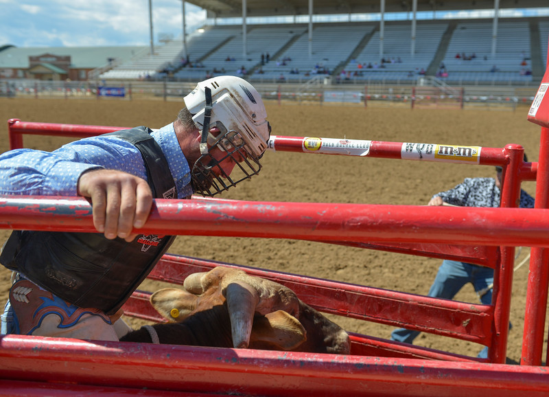 Justin Sheely | The Sheridan Press<br /> Bob Kay braces for the bull ride during the Saturday afternoon performance of the Sheridan County Rodeo at the Sheridan County Fairgrounds.