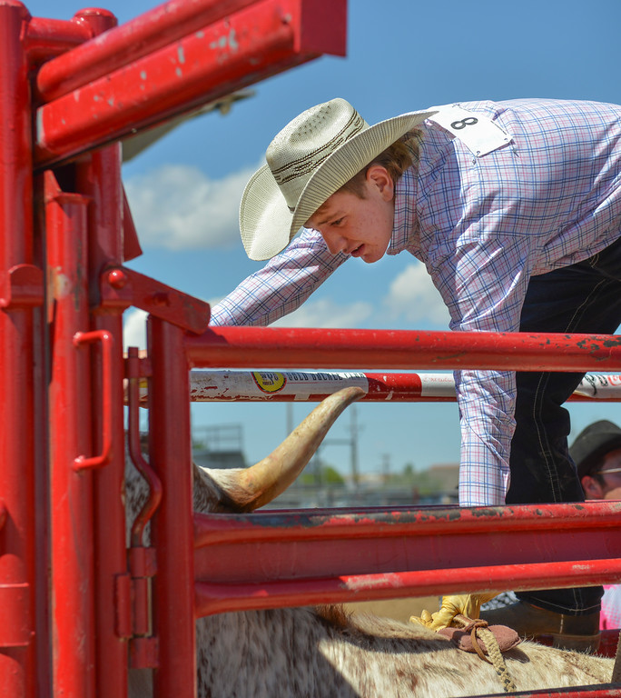 Justin Sheely | The Sheridan Press<br /> Gentry Lattin gets ready for steer riding during the Saturday afternoon performance of the Sheridan County Rodeo at the Sheridan County Fairgrounds.