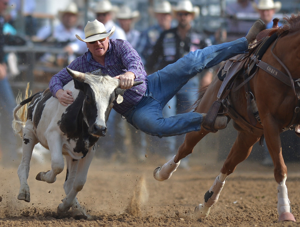 Justin Sheely | The Sheridan Press<br /> Stockton Graves of Alva, Oklahoma, competes in steer wrestling during the Cowboy State Elite Rodeo Athletes premier tour at the Sheridan County Fairgrounds in Sheridan. Sheridan was the only stop in Wyoming for the premier tour of the ERA rodeo, which is comprised of some of the most prestigious rodeo athletes.