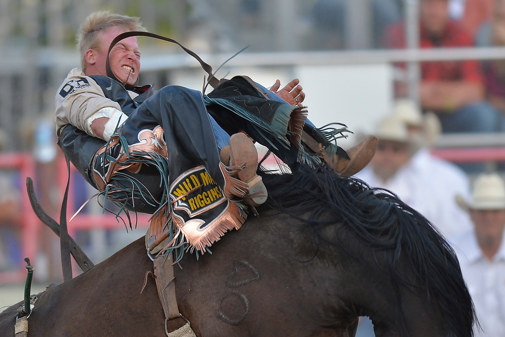 Justin Sheely | The Sheridan Press<br /> Wes Stevenson of Kaufman, Texas, competes in bareback riding during the Cowboy State Elite Rodeo Athletes premier tour at the Sheridan County Fairgrounds in Sheridan. Sheridan was the only stop in Wyoming for the premier tour of the ERA rodeo, which is comprised of some of the most prestigious rodeo athletes.