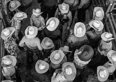 A pen-ful of cowboys at Dripping Springs Ranch Park, Texas.