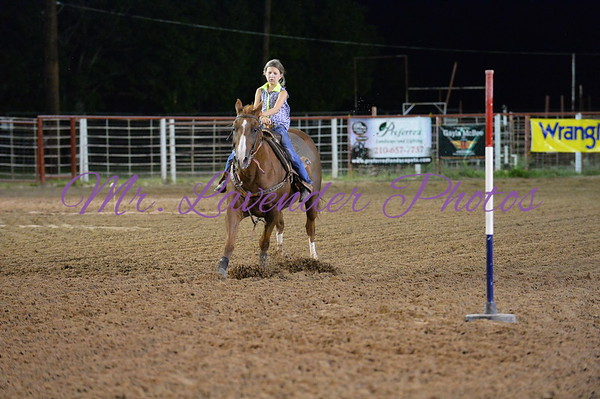 4H Youth Rodeo Book Two  Sept 6, 2014