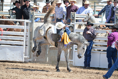 DSC_2545 Bridgerland HS Rodeo