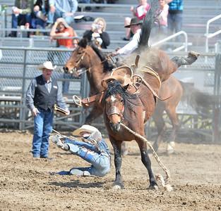 DSC_2708 Bridgerland HS Rodeo