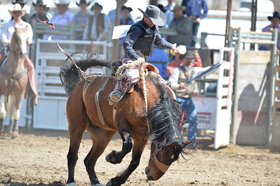 DSC_2643 Bridgerland HS Rodeo