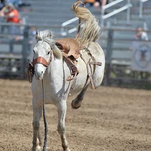 DSC_2601 Bridgerland HS Rodeo
