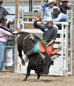 DSC_6051 Bridgerland HS Rodeo