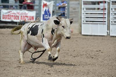 DSC_6000 Bridgerland HS Rodeo