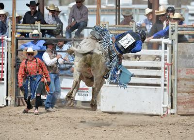 DSC_5962 Bridgerland HS Rodeo