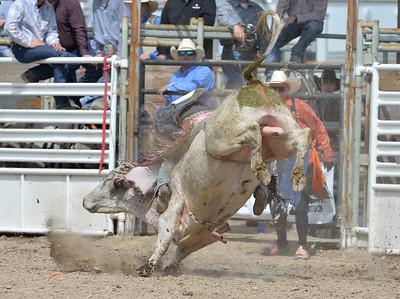 DSC_5919 Bridgerland HS Rodeo