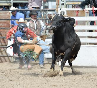 DSC_6022 Bridgerland HS Rodeo