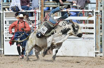 DSC_6034 Bridgerland HS Rodeo