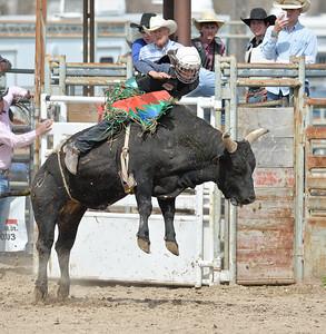 DSC_6053 Bridgerland HS Rodeo