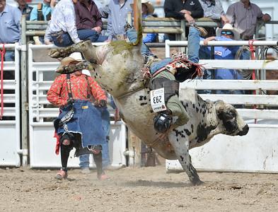 DSC_6036 Bridgerland HS Rodeo