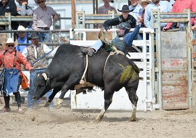 DSC_6020 Bridgerland HS Rodeo
