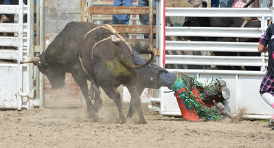 DSC_6060 Bridgerland HS Rodeo
