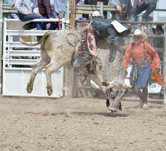 DSC_5921 Bridgerland HS Rodeo