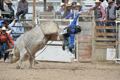 DSC_5963 Bridgerland HS Rodeo