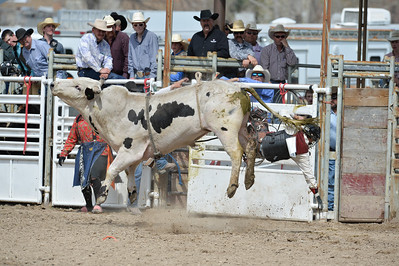 DSC_5998 Bridgerland HS Rodeo