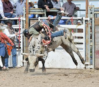 DSC_6032 Bridgerland HS Rodeo