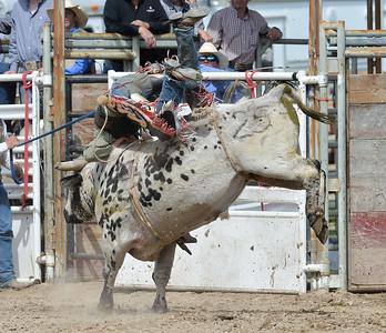DSC_6030 Bridgerland HS Rodeo