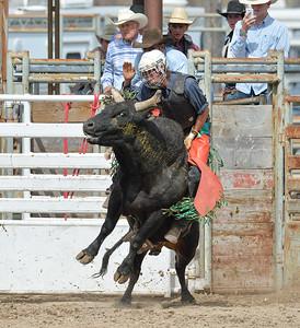 DSC_6048 Bridgerland HS Rodeo
