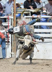 DSC_6033 Bridgerland HS Rodeo