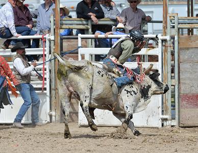 DSC_6027 Bridgerland HS Rodeo