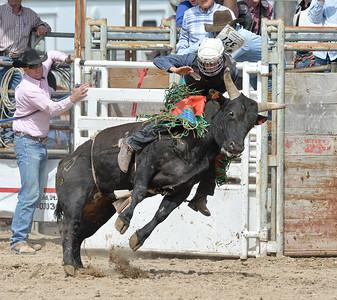 DSC_6052 Bridgerland HS Rodeo