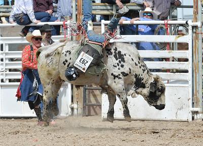 DSC_6035 Bridgerland HS Rodeo