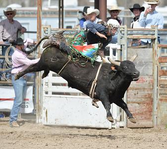 DSC_6054 Bridgerland HS Rodeo