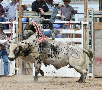 DSC_6031 Bridgerland HS Rodeo