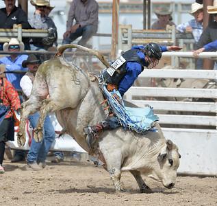 DSC_5961 Bridgerland HS Rodeo