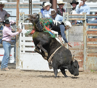 DSC_6055 Bridgerland HS Rodeo