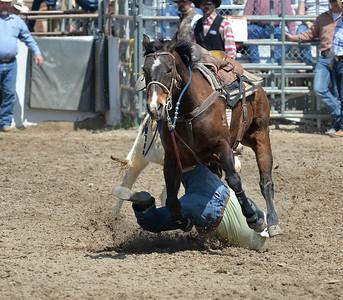 DSC_3082 Bridgerland HS Rodeo