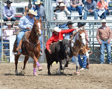 DSC_2847 Bridgerland HS Rodeo