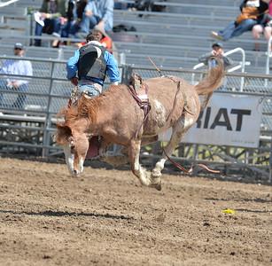 DSC_2496 Bridgerland HS Rodeo