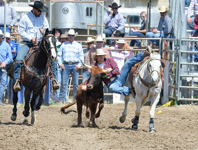 DSC_2901 Bridgerland HS Rodeo