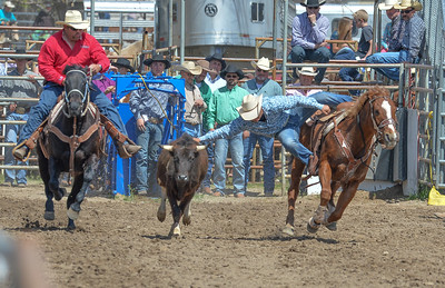 DSC_2992 Bridgerland HS Rodeo