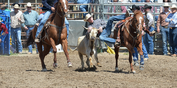 DSC_3020 Bridgerland HS Rodeo