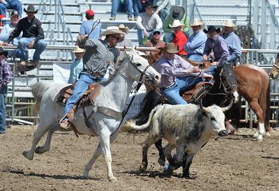 DSC_2833 Bridgerland HS Rodeo