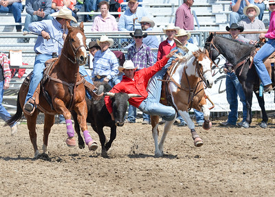 DSC_2850 Bridgerland HS Rodeo