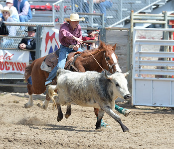 DSC_3165 Bridgerland HS Rodeo